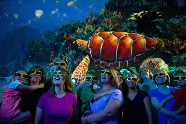 Projeção de filme 3D 360 graus sobre a conservação de tartarugas marinhas. | Foto