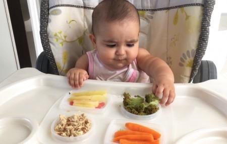 biw alimentação bebe 6 meses