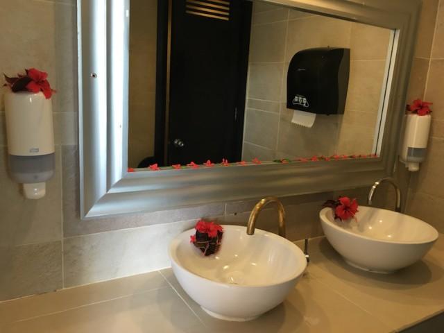 banheiro hr punta cana