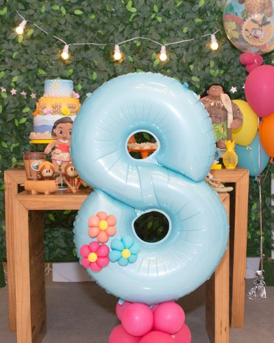 aline balões campinas festa